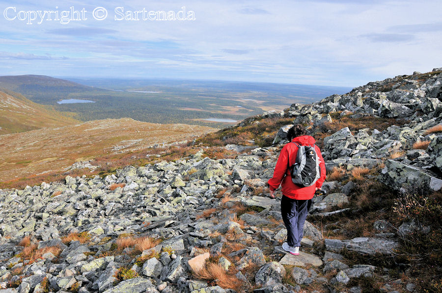 Hiking beyond the Arctic Circle in Lapland