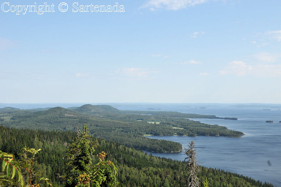 Koli National Park and Lake Pielinen in Finland