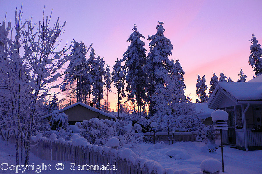 Snow and Sunrise where I live in January 2010