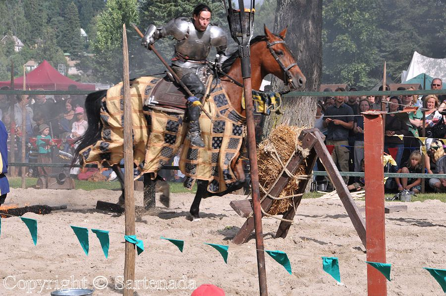 Jousting in Finland - yes