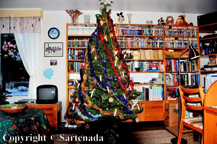 Christmas tree decorations / Adornos de Navidad de árboles de Navidad / Décorations d'arbre de Noël