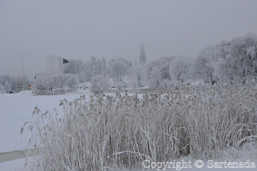 Helsinki in winter / Helsinki en invierno / L'hiver à Helsinki