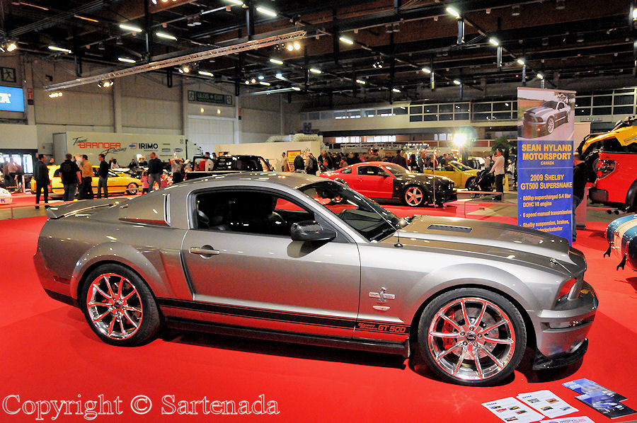 Shelby GT500 Supersnake from 2009