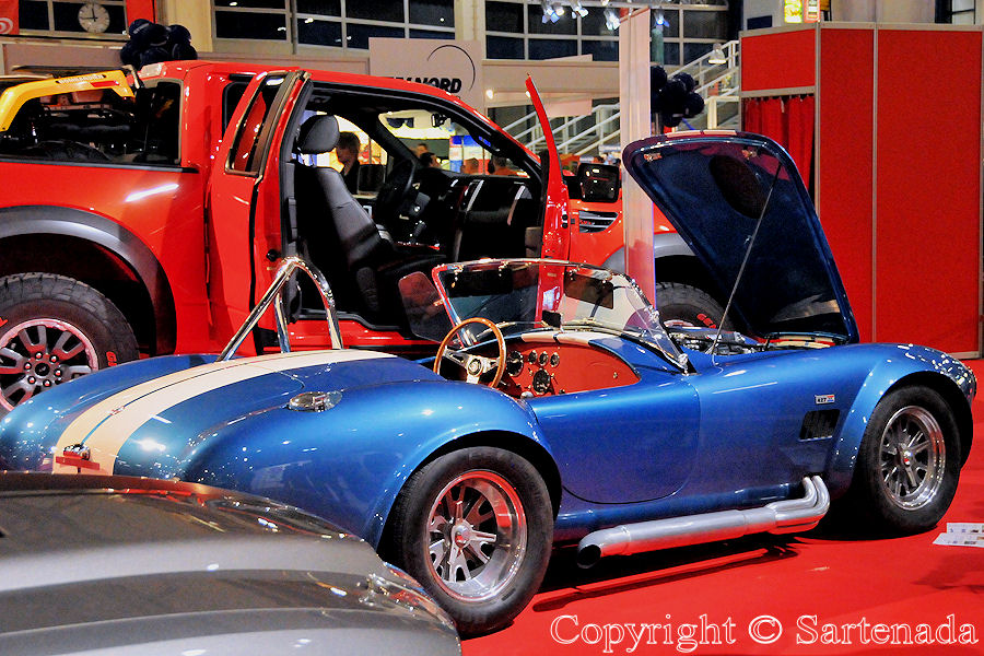 Shelby Cobra CSX from the year 1966