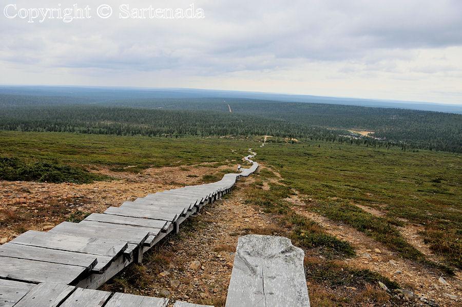 Climbing to the top of Arctic hill of Kiilopää