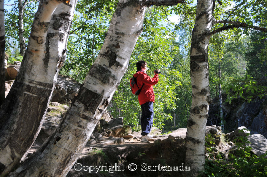 South of the Arctic Circle 1 / Sur del Círculo Polar 1 / Sud du Cercle arctique 1