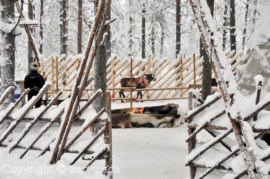 Arctic Circle in winter / Círculo Polar Ártico en invierno / Cercle Arctique en hiver