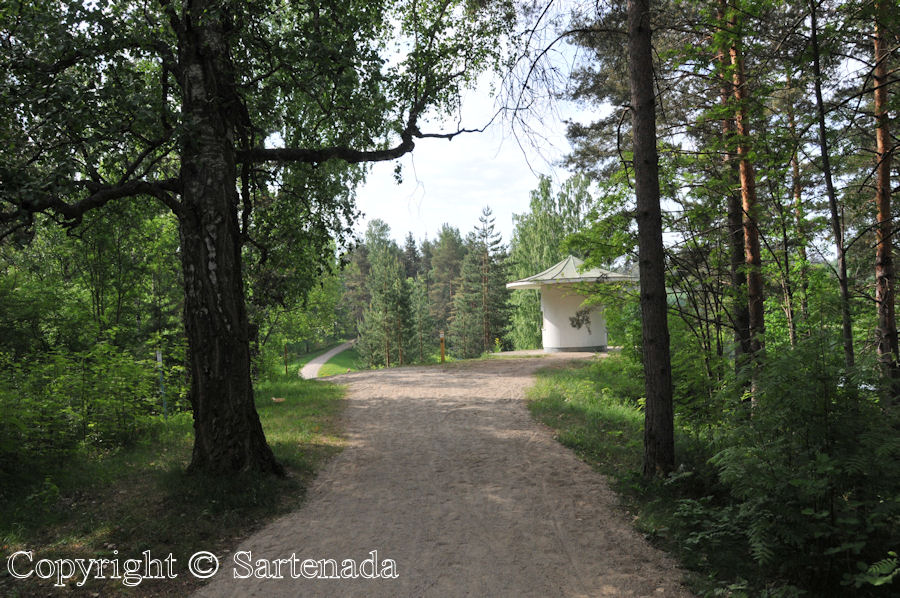 Kaihu nature Path / Sendero Natural / Sentier Nature