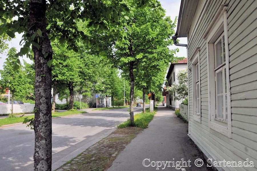 Summer arrived in Mikkeli / Llegó el verano a Mikkeli / L'été est arrivé á Mikkeli