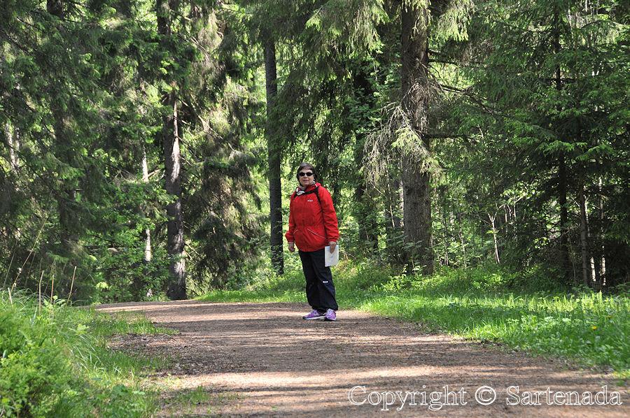 Sunday walk / Paseo de domingo / Balade du dimanche / Caminhada de domingo