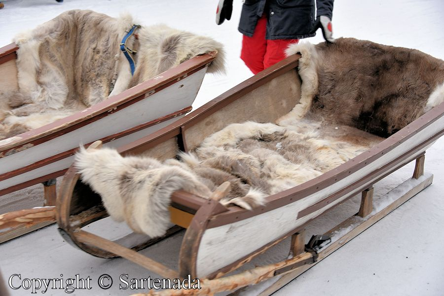 Reindeer  sleigh.