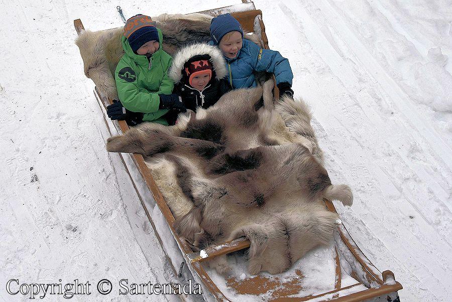 Arctic Circle / Círculo Polar Ártico / Cercle Polaire Arctique / Círculo Polar Ártico