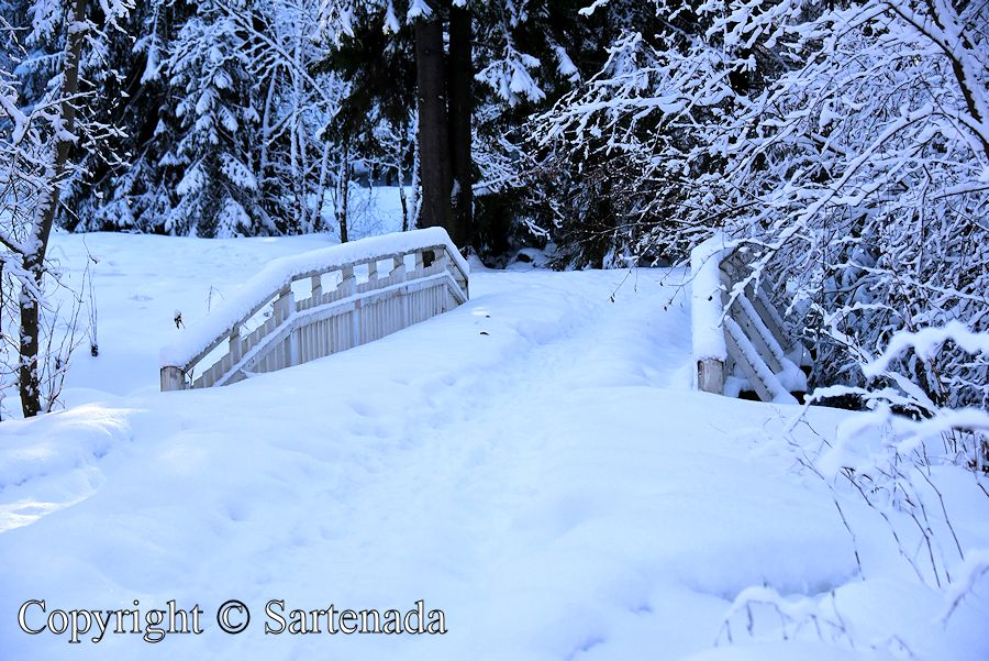 White bridges in winter / Puentes blancos en invierno / Ponts Blanc en hiver / Pontes brancas no inverno