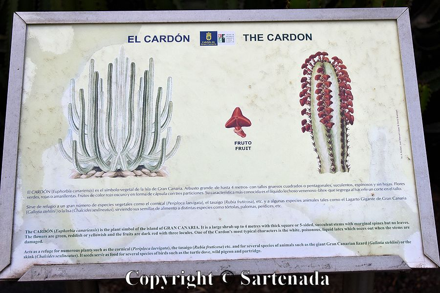 19. Sign telling about the Cardon
