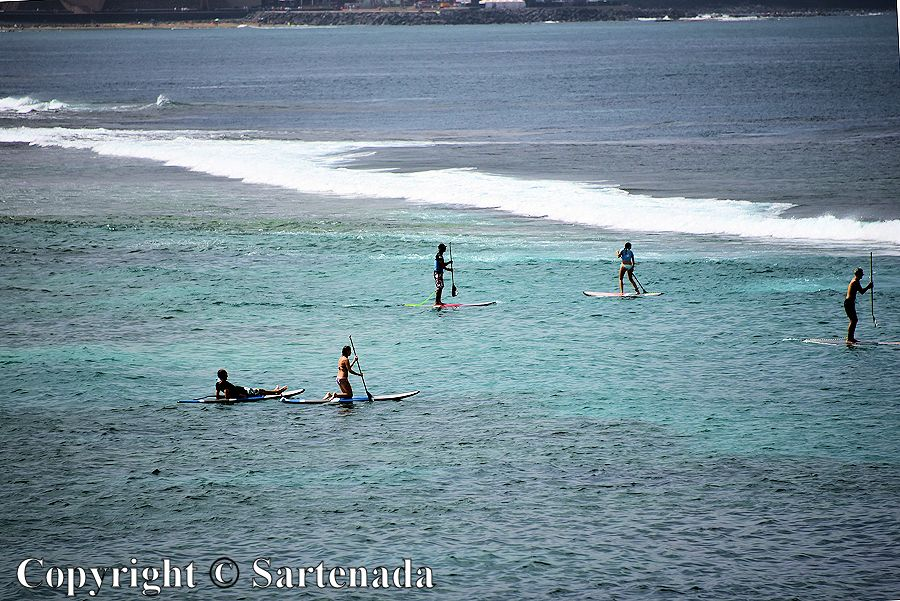 19. Stand up paddlers