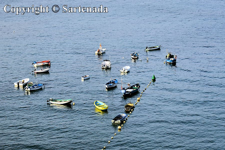Small boats near to the beach Playa de Las Canteras