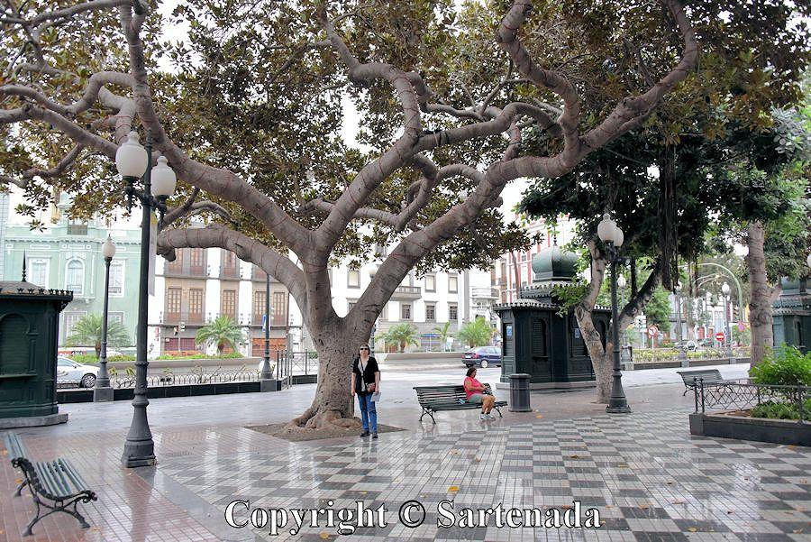 3. Las Plamas - old town