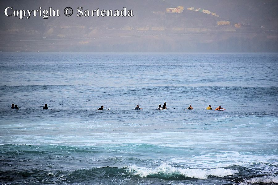 14. Seals in the ocean - no, but surfers waiting for the appropriate waves