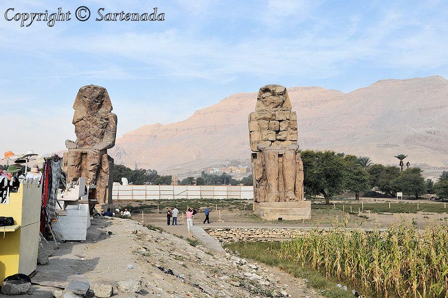 Colossi of Memnon / Colosos de Memnon / Colosses de Memnon / Colossos de Memnon