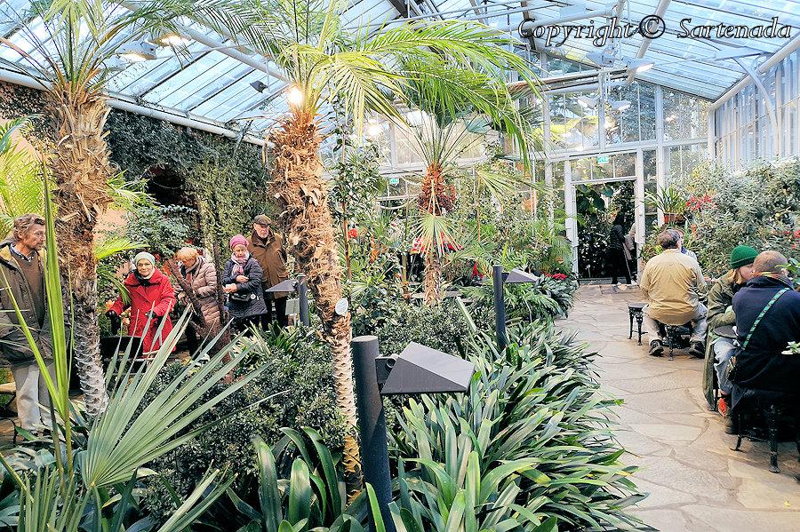 Winter Garden / Jardín de invierno / Jardin d'hiver / Jardim de Inverno